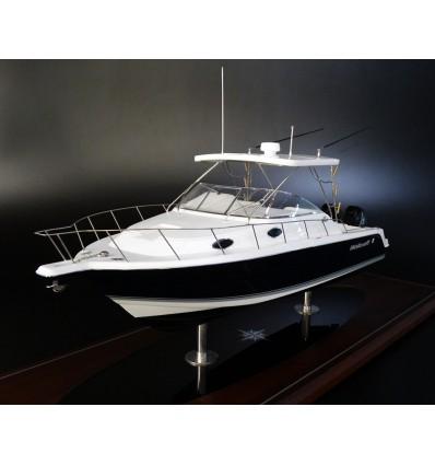WELLCRAFT 290 Coastal custom model