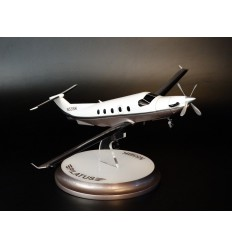 Pilatus N55BK Airplane Model