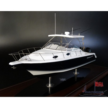 WELLCRAFT 290 Coastal custom model