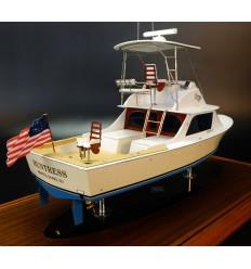Bertram 31 custom model