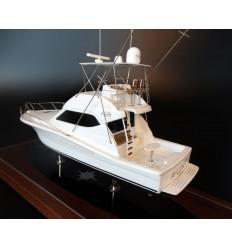 Rampage 48 Convertible Custom model