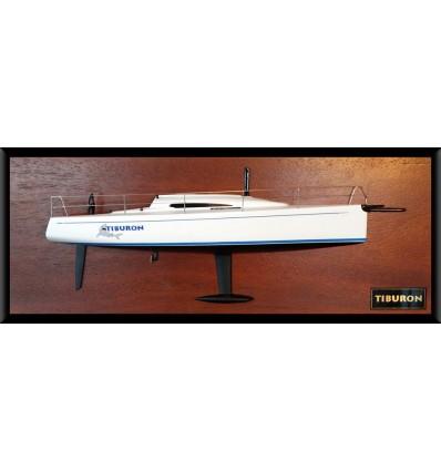 Santa Cruz 37 half model