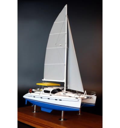 Privilège 495 Catamaran custom model
