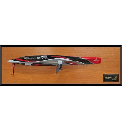 AC 75 Te Rehutai Emirates Team New Zealand half hull MM-101